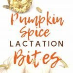 An image of pumpkin spice lactation bites with pumpkins in the photo.