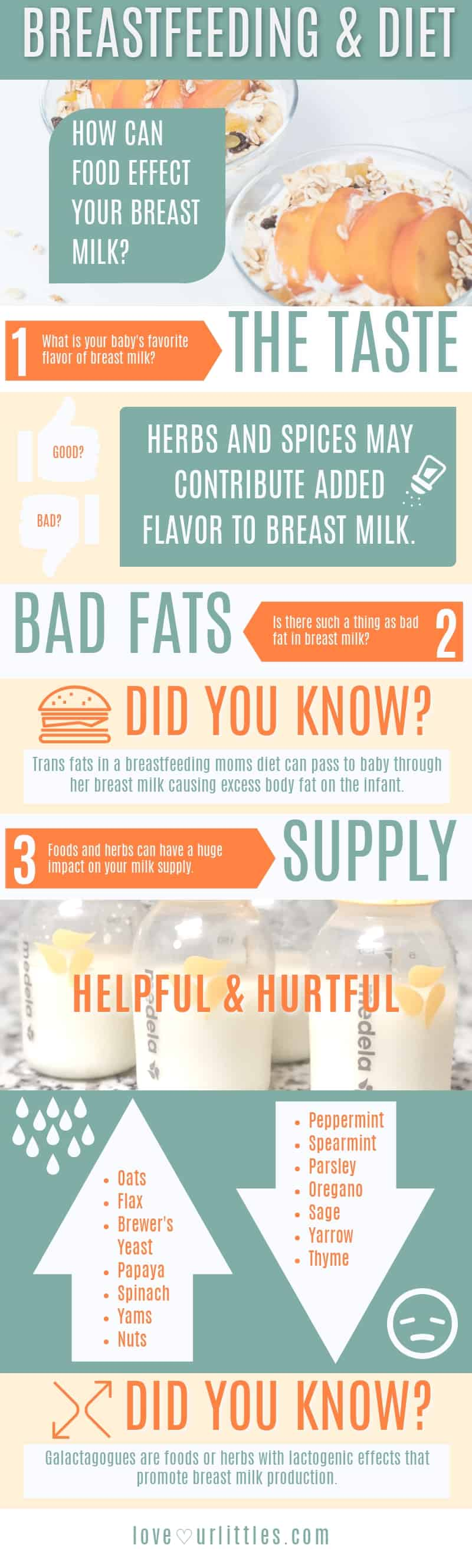 Breastfeeding diet and foods infographic