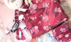 What to Pack in Your Breast Pump Bag: 12 Essentials and A Free Breast Pump Bag Checklist
