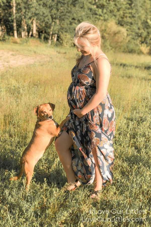 DIY pregnancy photo with your pet.