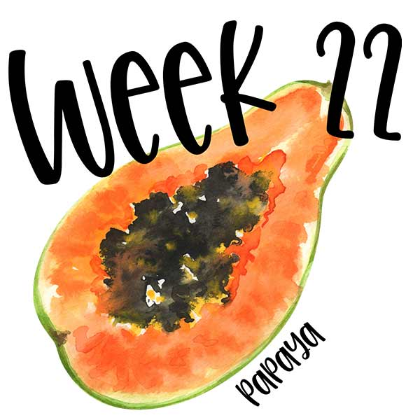 Papaya illustration for week 22 of size of baby in the womb.