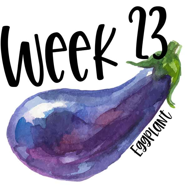 Baby size comparison photo of an illustrated eggplant for week 23.