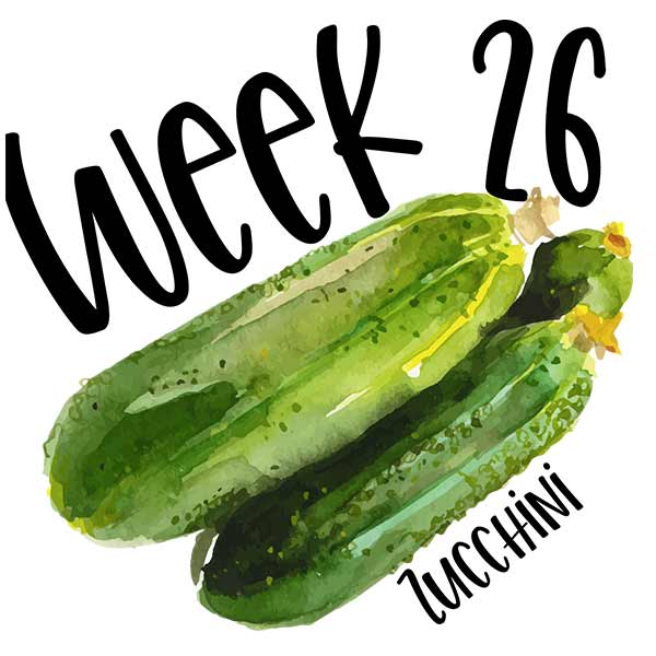 Baby size by week 26 and an illustration of two zucchinis.