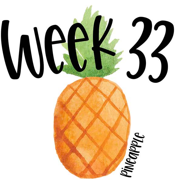 Picture of a watercolor pineapple for baby's 33 week growth example.