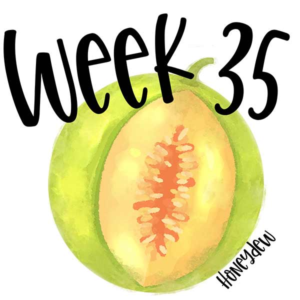 Baby size for week 35 and a honeydew melon.