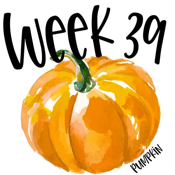 A watercolor pumpkin for week 39 of baby's growth in the womb.
