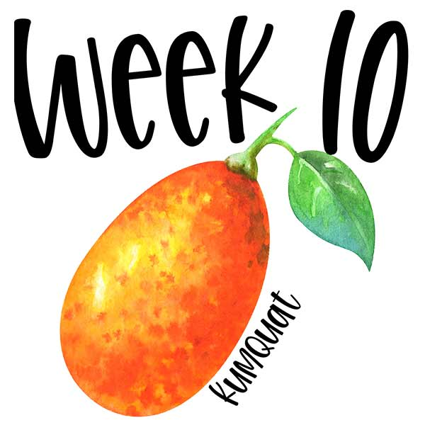 Week 10 baby size chart, picture of a kumquat for comparison.